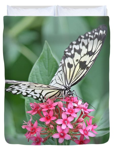Paper Kite Butterfly - 2 Duvet Cover