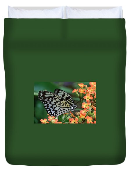 Paper Kite Butterfly Duvet Cover