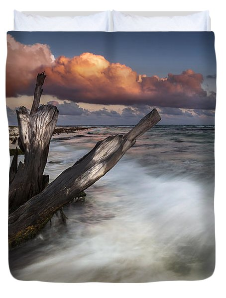 Duvet Cover featuring the photograph Paradise Lost by Mihai Andritoiu