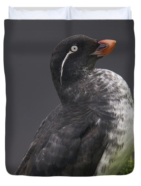Parakeet Auklet Sitting In Green Duvet Cover by Milo Burcham