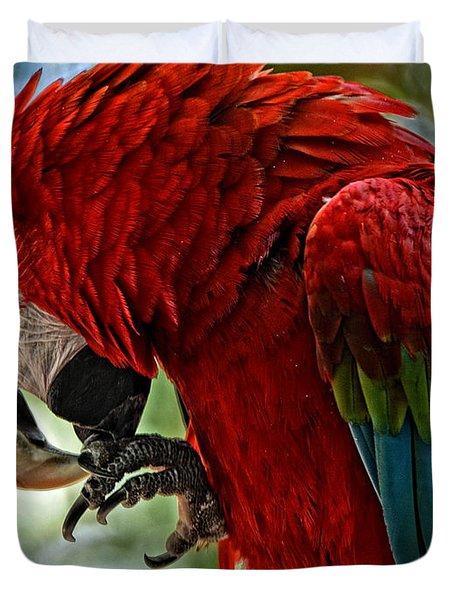 Parrot Preen Hdr Duvet Cover