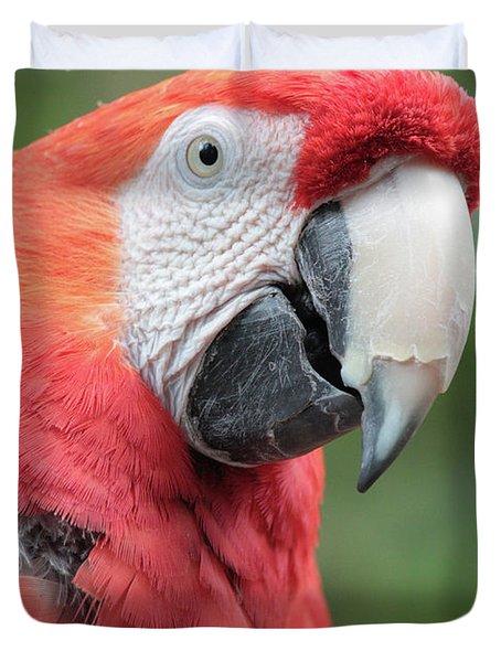 Parrot Profile Duvet Cover by Carol Groenen