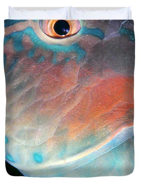 Parrotfish 2 Duvet Cover by Dawn Eshelman