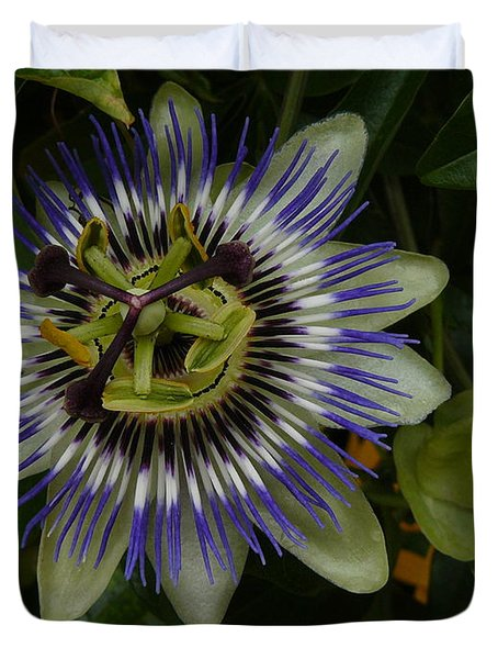 Duvet Cover featuring the photograph Passion Flower by Jane Ford