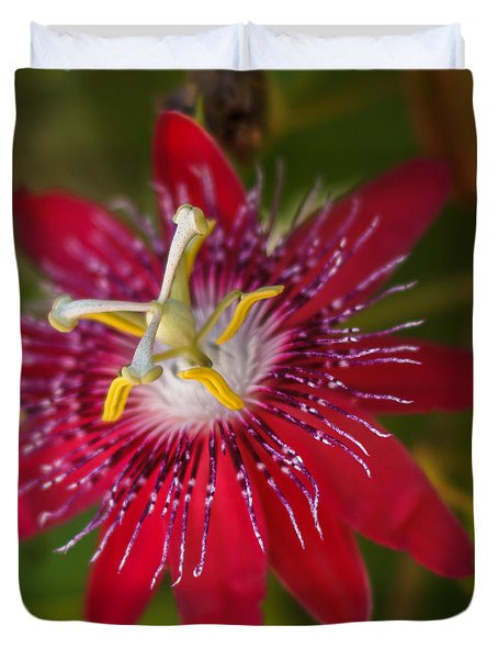 Duvet Cover featuring the photograph Passion Flower by Jane Luxton