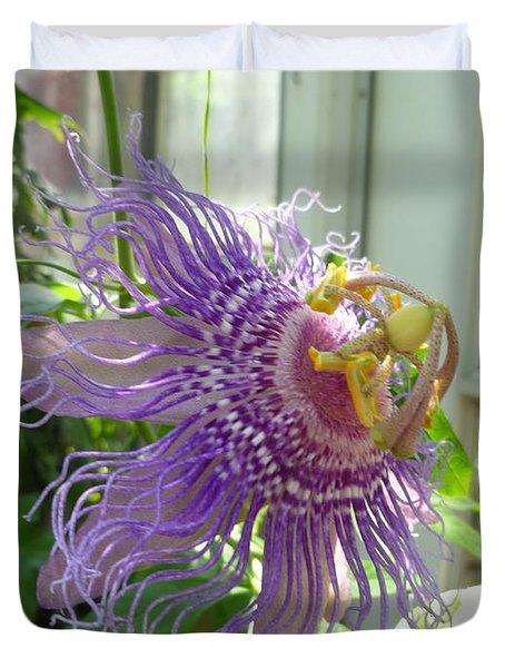 Passion Flower Duvet Cover by Lingfai Leung