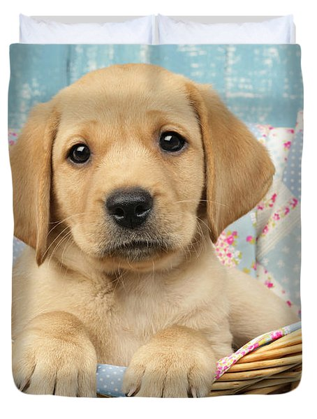 Patchwork Puppy Dp793 Duvet Cover by Greg Cuddiford