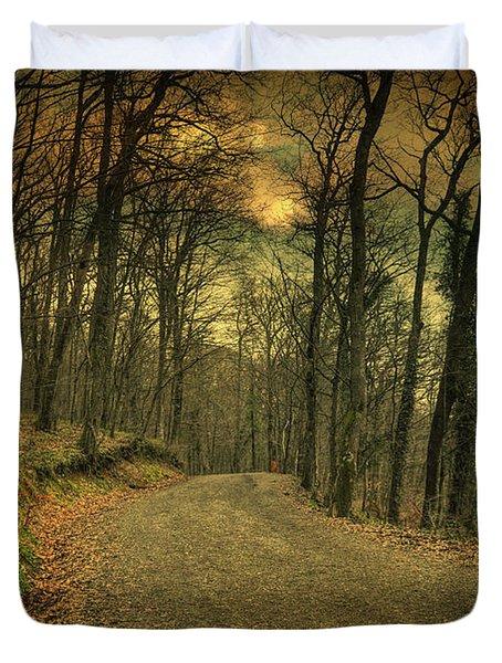 Path IIi Duvet Cover by Taylan Apukovska