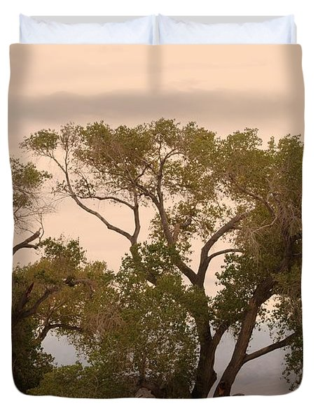 Peaceful Duvet Cover by Kathleen Struckle