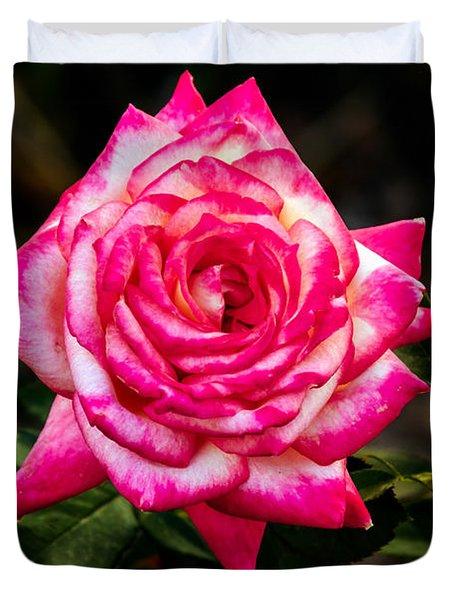 Peaceful Rose Duvet Cover
