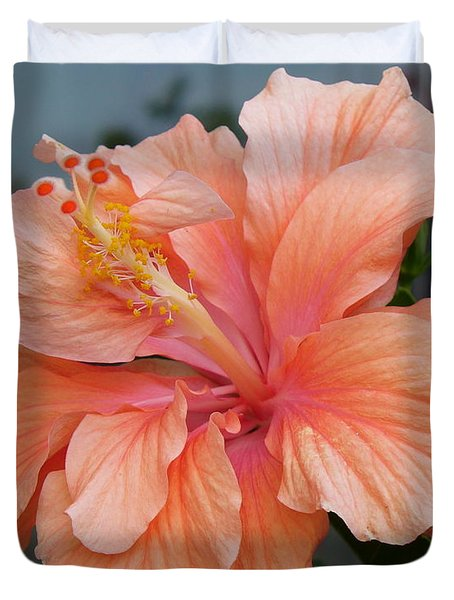 Duvet Cover featuring the photograph Peach And Cream by Lingfai Leung