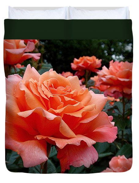 Peach Roses Duvet Cover