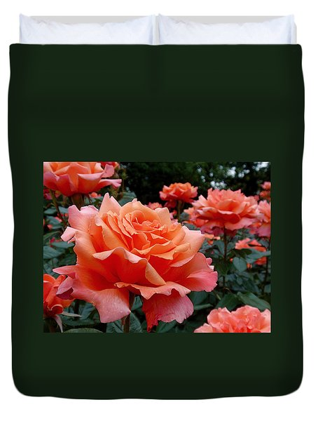 Peach Roses Duvet Cover