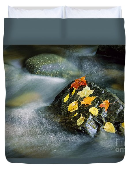 Duvet Cover featuring the photograph Peacham Brook In Fall by Alan L Graham