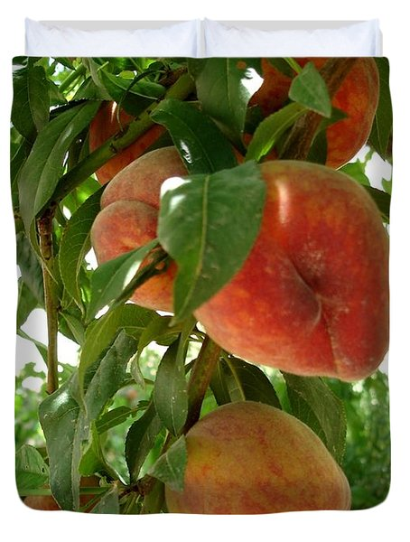 Duvet Cover featuring the photograph Peaches On The Tree by Kerri Mortenson