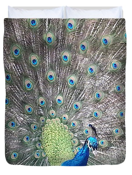 Duvet Cover featuring the photograph Peacock Bow by Caryl J Bohn