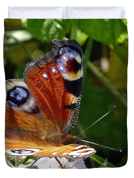 Peacock Butterfly Duvet Cover