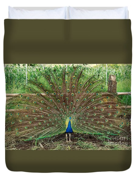 Duvet Cover featuring the photograph Peacock Full Glory by Eva Kaufman