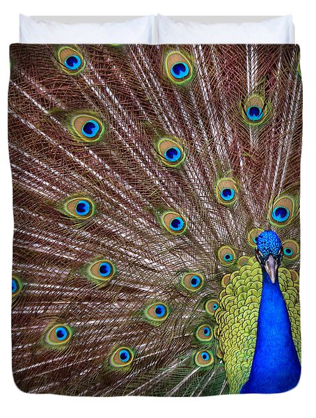 Duvet Cover featuring the photograph Peacock Squared by Jaki Miller