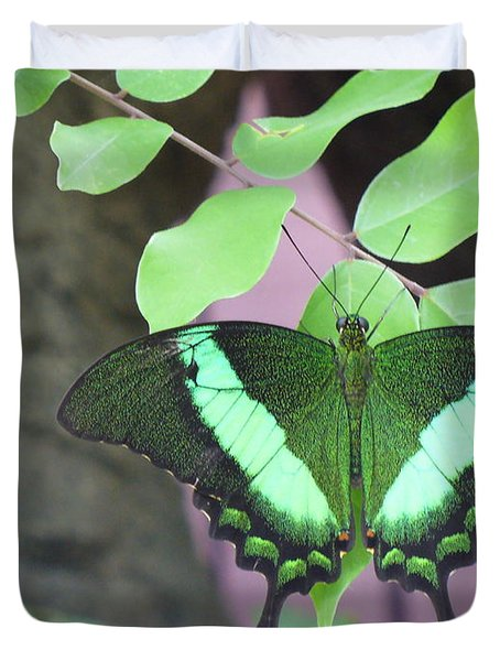 Duvet Cover featuring the photograph Peacock Swallowtail by Lingfai Leung