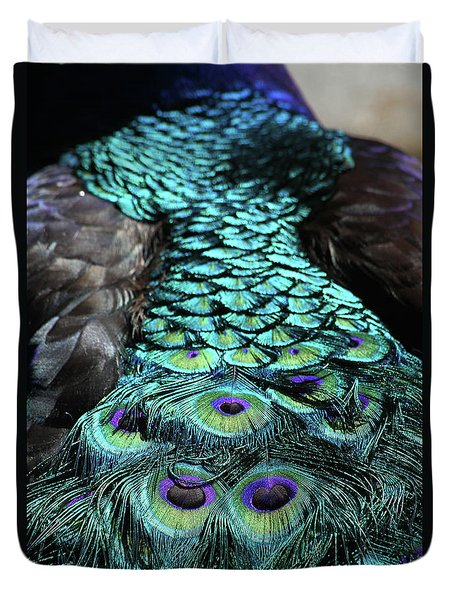 Peacock Trail Duvet Cover