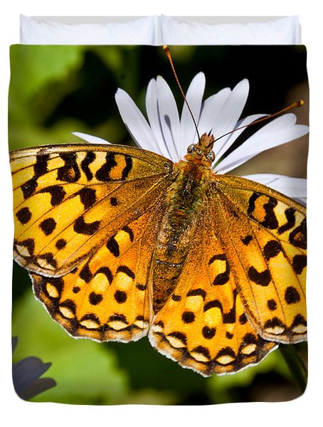 Pearl Border Fritillary Butterfly On An Aster Bloom Duvet Cover by Jeff Goulden