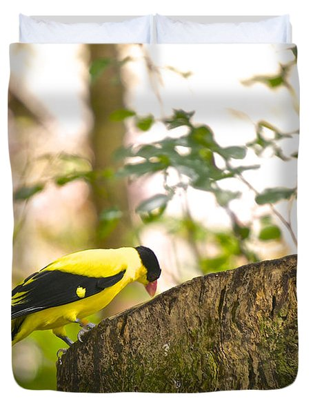 Pecking Away Duvet Cover by Judy Kay