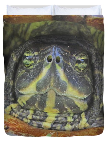 Duvet Cover featuring the photograph Peek A Boo by Judith Morris
