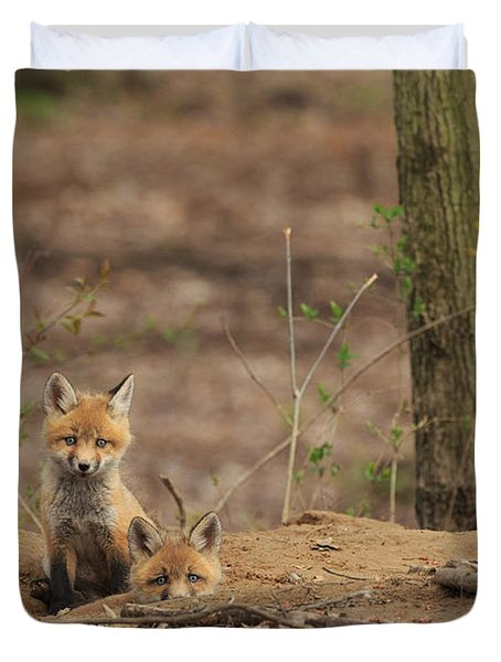 Peeking From The Fox Hole Duvet Cover by Everet Regal