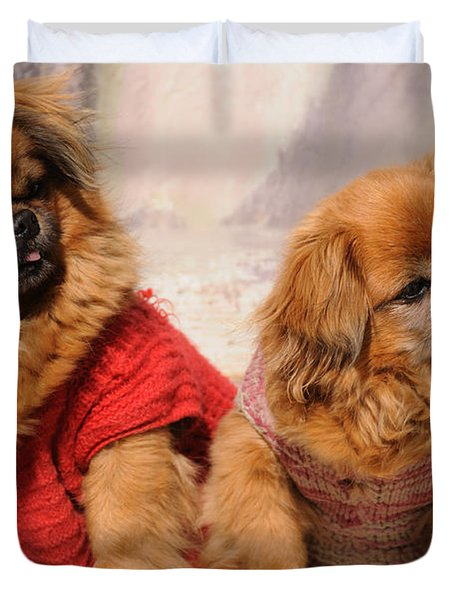 Duvet Cover featuring the photograph Pekingese Pair by Jeremy Voisey