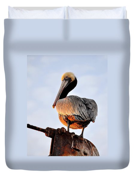 Pelican Looking Back Duvet Cover