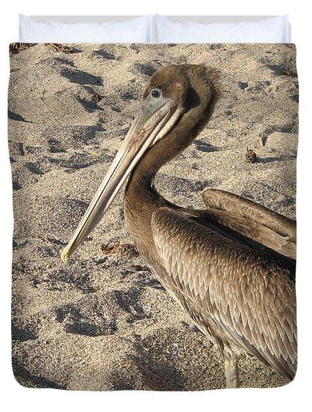 Pelican On Beach Duvet Cover by DejaVu Designs