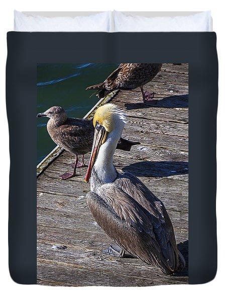 Pelican On Dock Duvet Cover