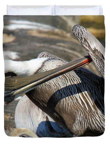 Pelican Scratch Duvet Cover by Adam Jewell