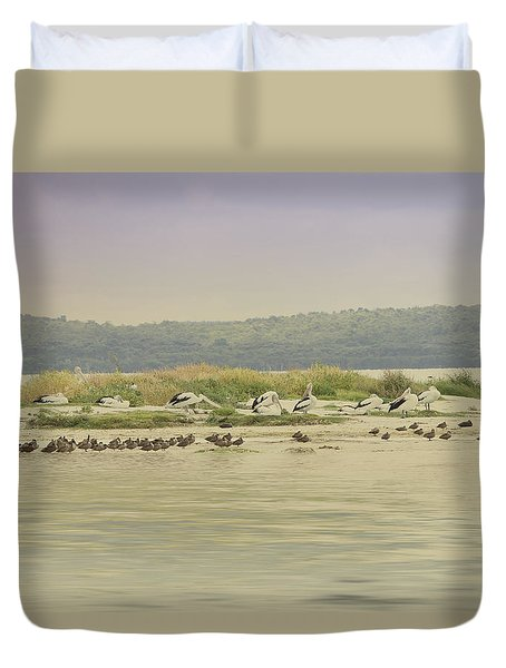 Pelicans At Poddy Shot Duvet Cover by Elaine Teague