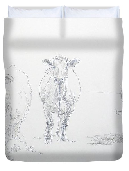 Pencil Drawing Of Three Cows Duvet Cover
