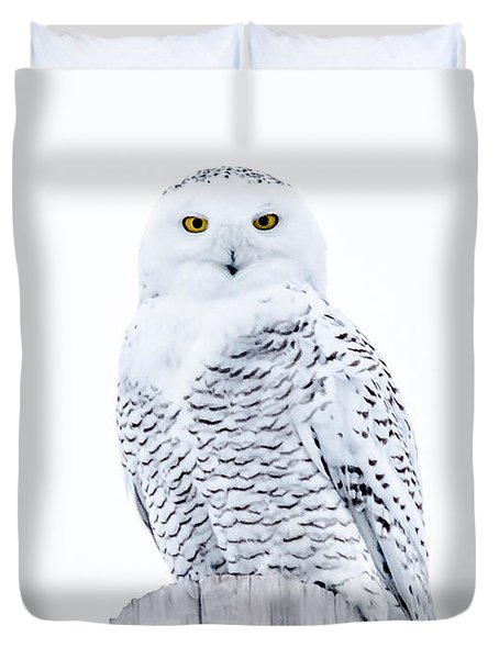 Penetrating Stare Duvet Cover