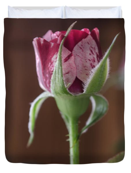 Duvet Cover featuring the photograph Peppermint Rose Bud by Donna Brown