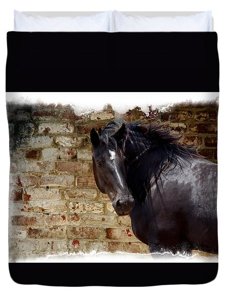 Percheron Mare Portrait Duvet Cover