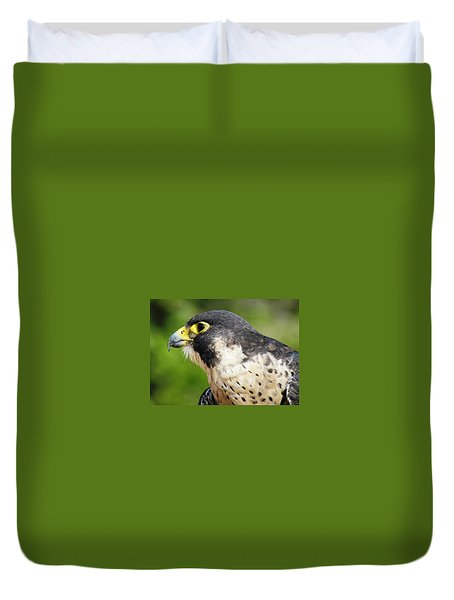 Duvet Cover featuring the photograph Peregrine Falcon by Cynthia Guinn