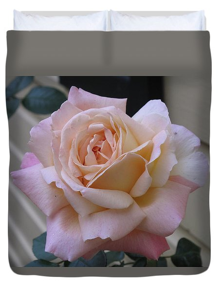 Perfect Blushing October Rose Duvet Cover