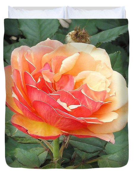 Duvet Cover featuring the photograph Perfect Rose by Janette Boyd