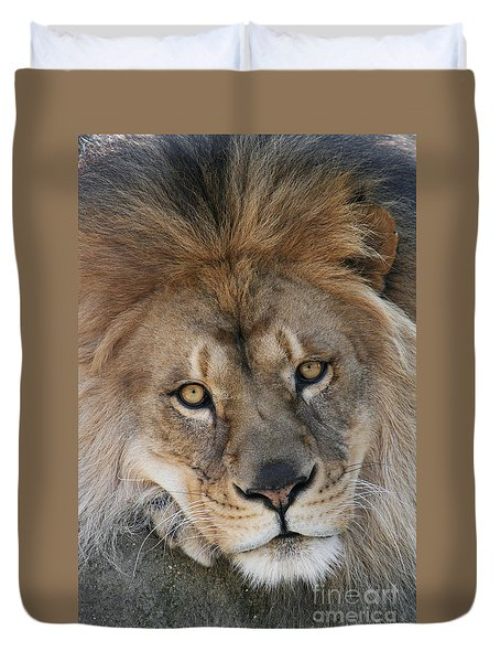 Pet Me Duvet Cover by Judy Whitton