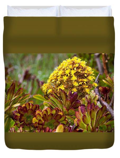 Petal Dome Duvet Cover by Melinda Ledsome