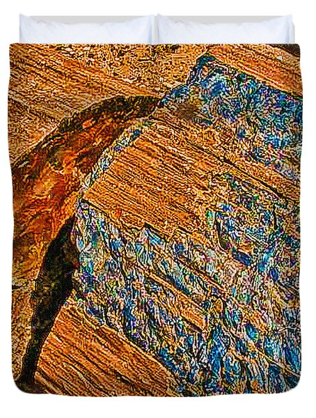 Petrified Forest Logs Duvet Cover by Bob and Nadine Johnston