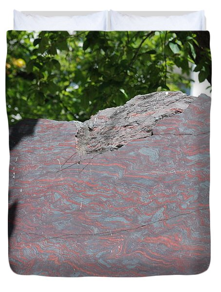 Petrified Wood On Display Duvet Cover