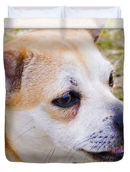 Pets Duvet Cover