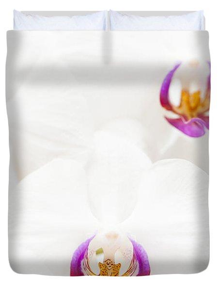 Phalaenopsis Duvet Cover by Anne Gilbert