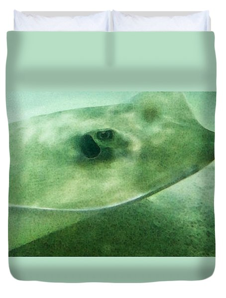Phantom - Manta Ray Art By Sharon Cummings Duvet Cover by Sharon Cummings
