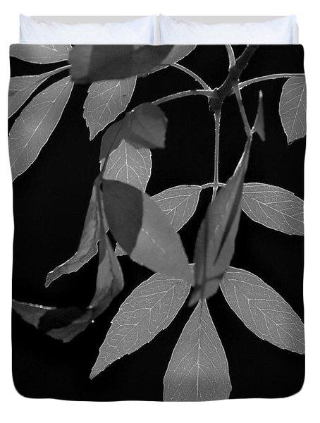 Phoenix Fall 05 Duvet Cover